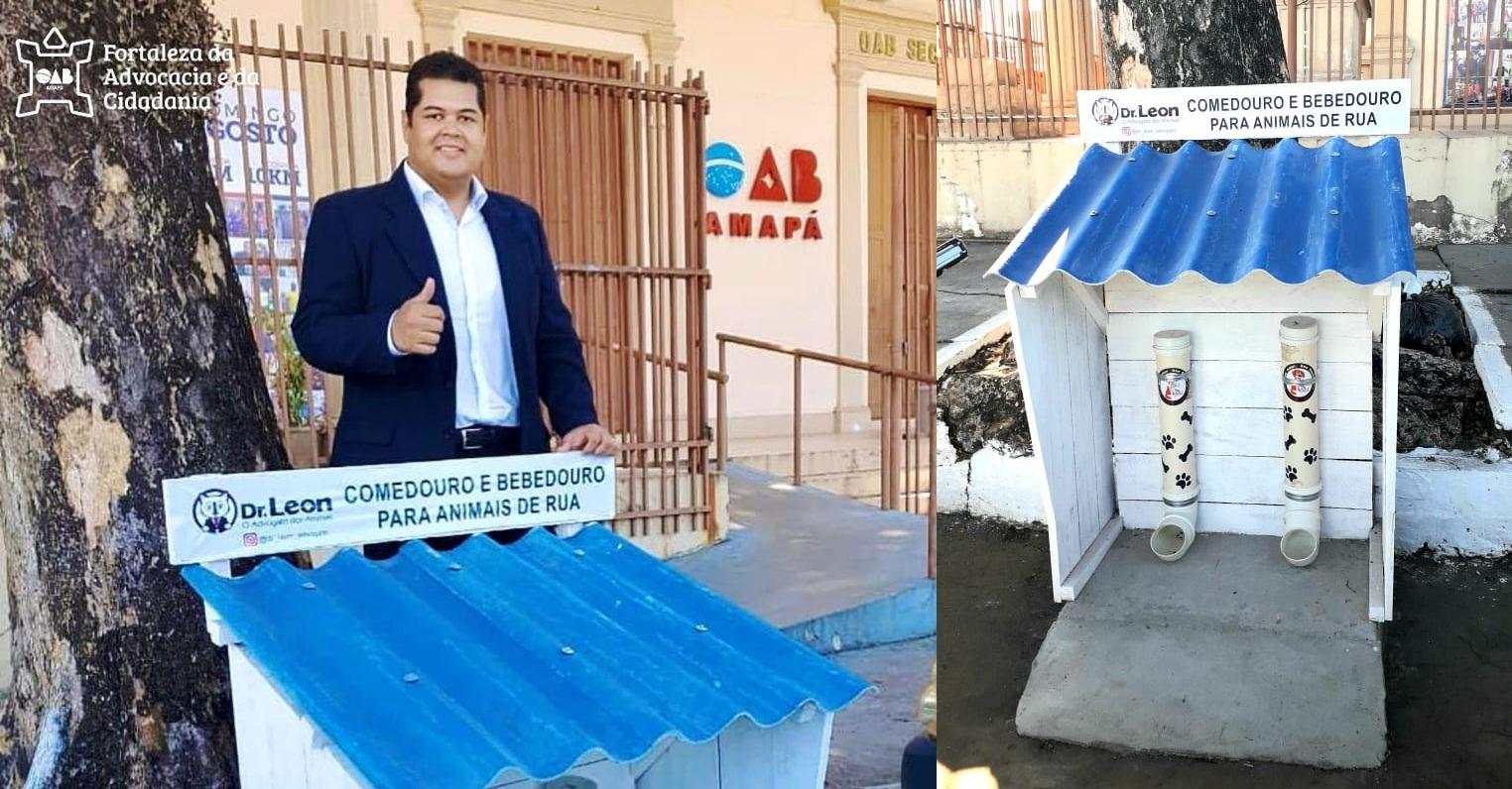 OAB-AP instala comedouro público para animais de rua